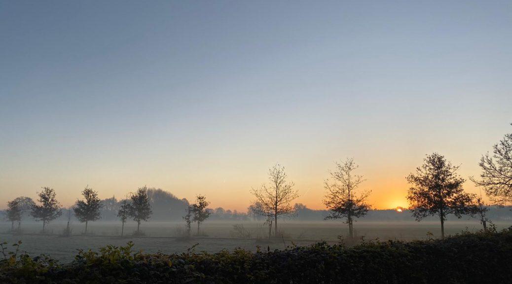 Goor ochtend uitzicht